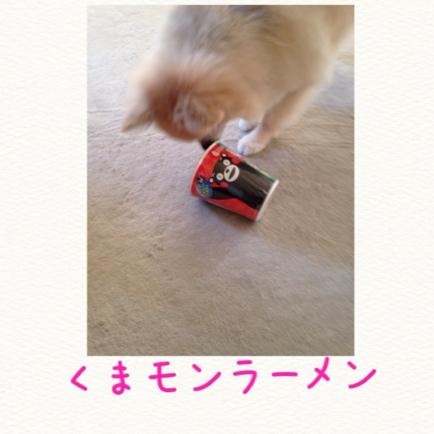 fc2blog_201409302213496e1.jpg