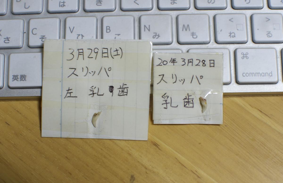 DSC_1896_convert_20131117000858.jpg