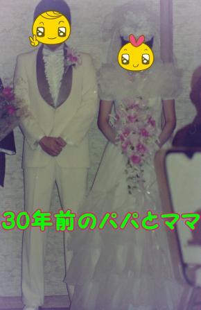 0184_convert_20141204105431.jpg