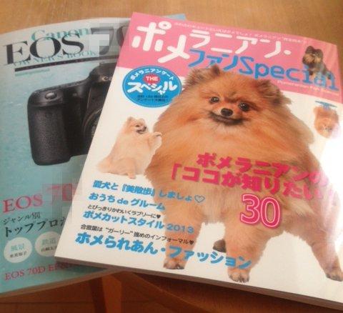 20130822book.jpg