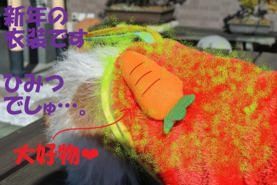 046_convert_20131114150544.jpg