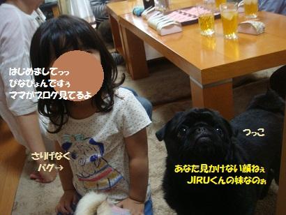DSC00458_20121211001048_201308151704202e3.jpg