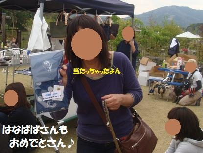 DSC02477_20130610221539.jpg