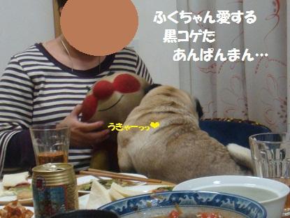 DSC02674.jpg