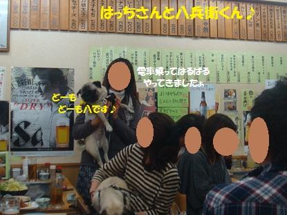DSC02883_20130618184141.jpg