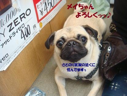 DSC02996_20130618184142.jpg