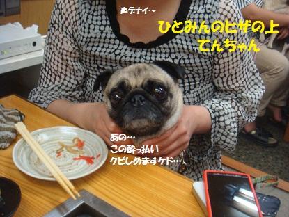 DSC03008_20130618184958.jpg