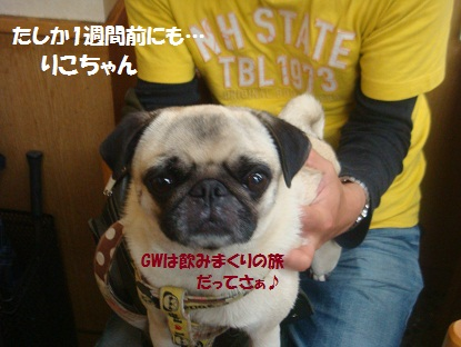 DSC03152_20130618183144.jpg