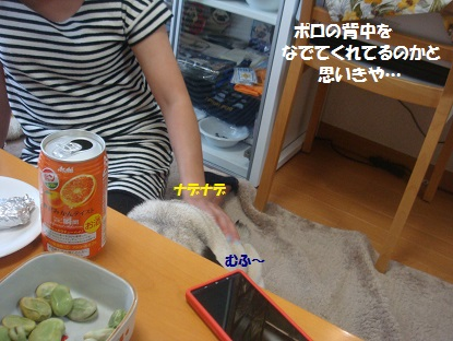 DSC03295.jpg