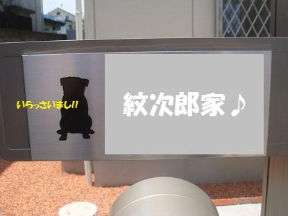 DSC04160_20130816123646735.jpg