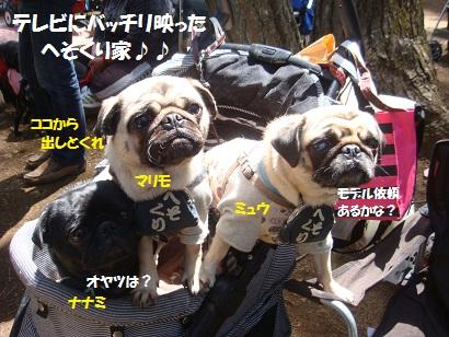 DSC06150_20130803002758b27.jpg