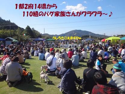 DSC07414_20131110214507f87.jpg
