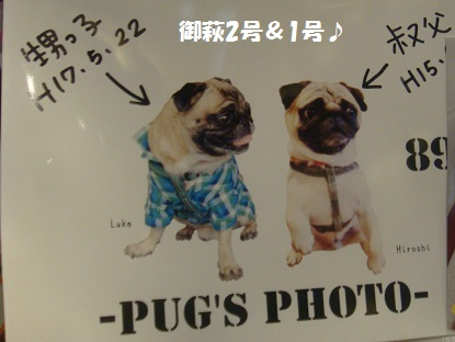 PMBS3697.jpg