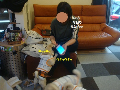 PMBS3709.jpg