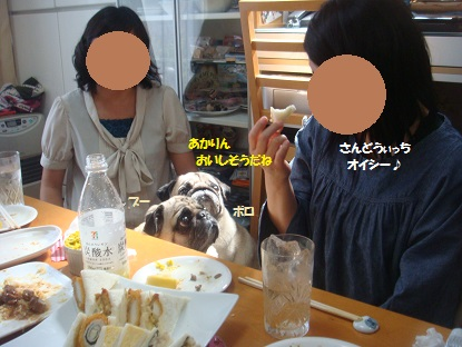 PMBS3867.jpg