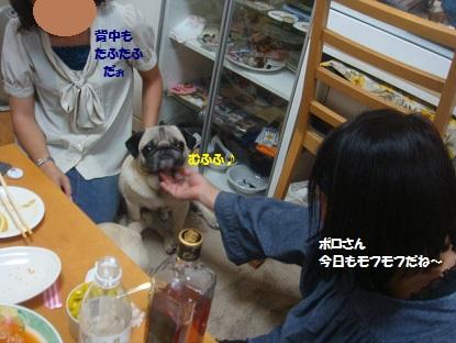 PMBS3885.jpg