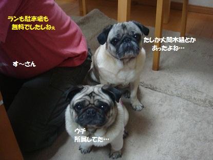 PMBS3946.jpg