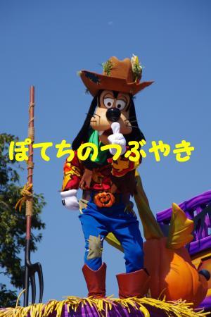 20141020 グーさん (2)