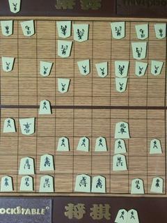将棋講座14