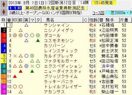 新潟記念2013