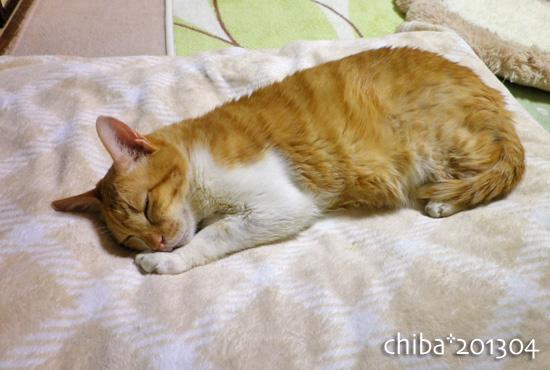 chiba13-04-107.jpg