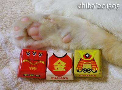 chiba13-05-06.jpg