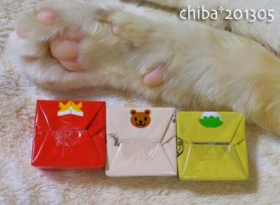 chiba13-05-07.jpg