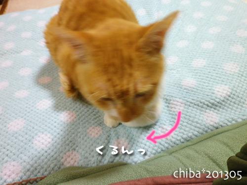 chiba13-05-134.jpg