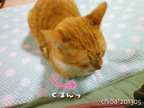 chiba13-05-136.jpg