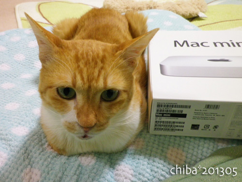 chiba13-05-73.jpg