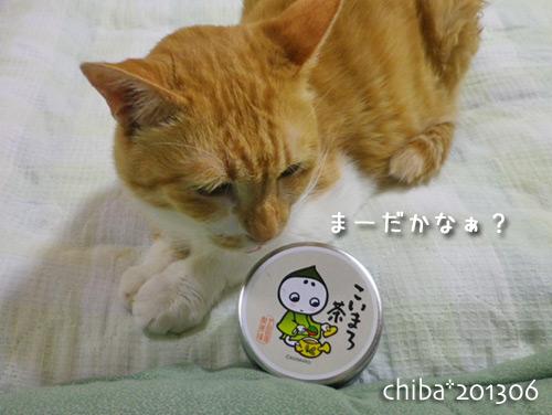 chiba13-06-135.jpg