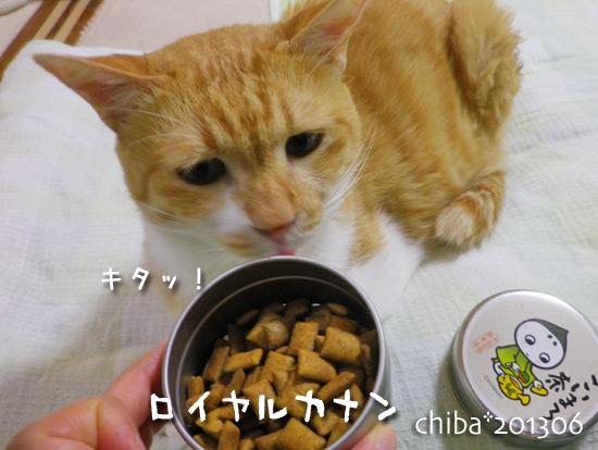 chiba13-06-136.jpg