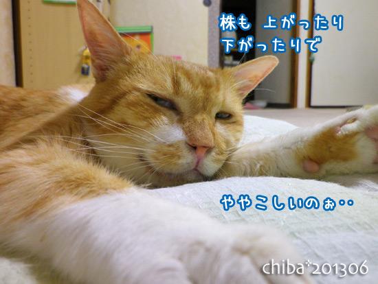 chiba13-06-142.jpg