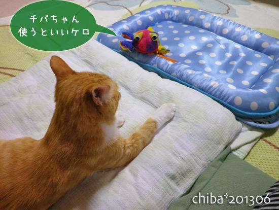 chiba13-06-177.jpg
