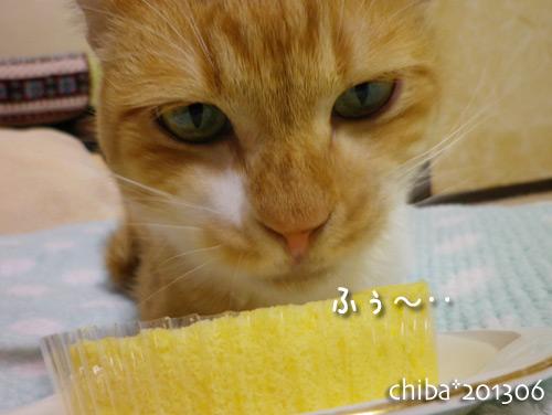 chiba13-06-18.jpg