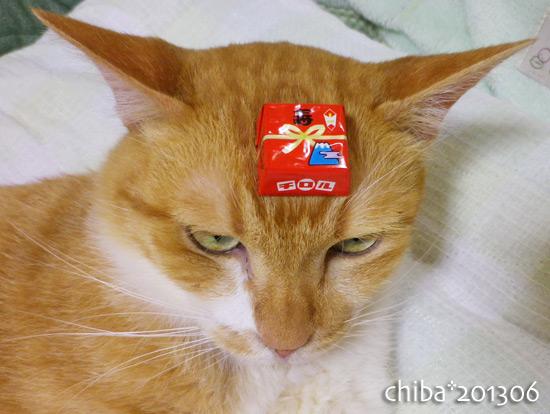 chiba13-06-213.jpg