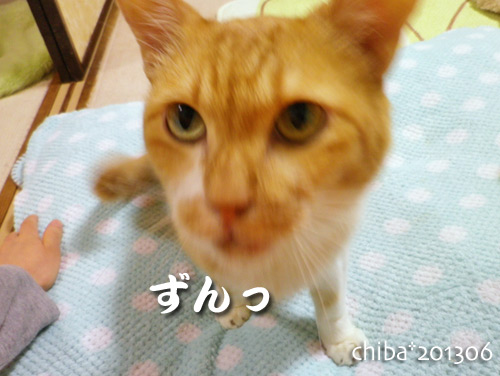 chiba13-06-27.jpg