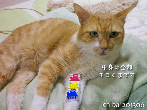 chiba13-06-41s.jpg
