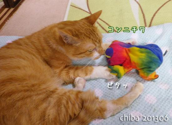 chiba13-06-67.jpg