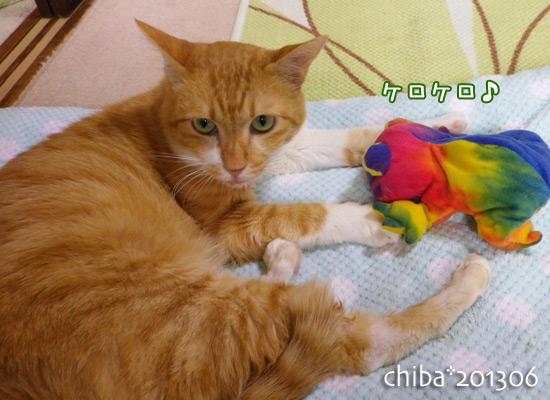 chiba13-06-68.jpg