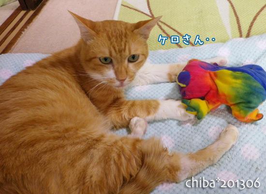 chiba13-06-69.jpg