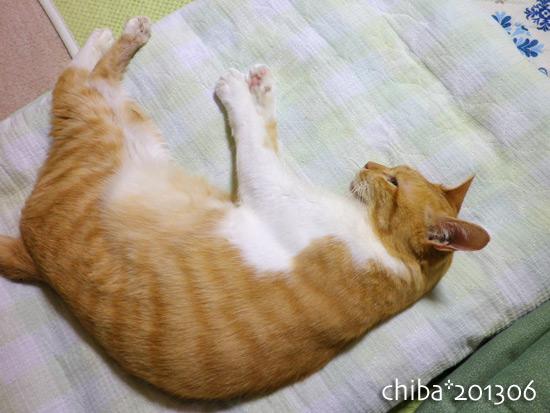 chiba13-06-99.jpg