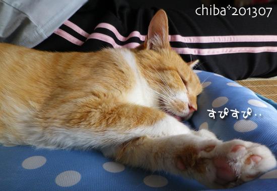 chiba13-07-32.jpg