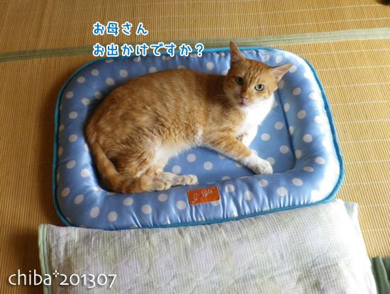 chiba13-07-34.jpg