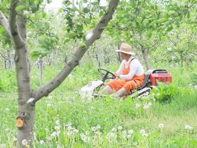 草刈り隊2