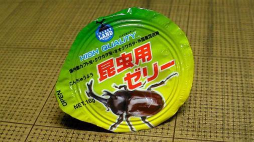 昆虫ゼリー 2013-08-17 (3)