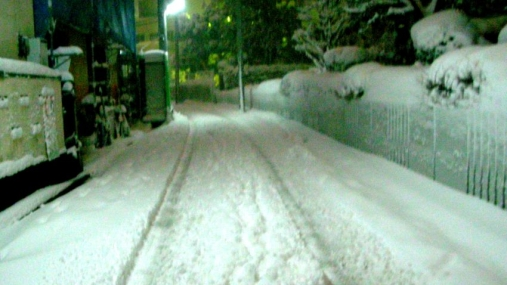 yuki 2014-02-08 (1)