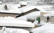 横手市雪おろしjd