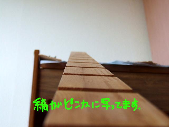 DSCF130902a8336.jpg