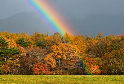 rainbow131104_01.jpg